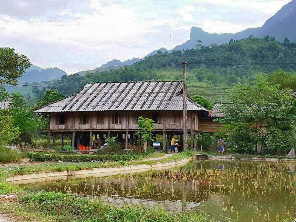Những ngôi nhà sàn truyền thống có tuổi đời trên dưới 50 năm bên cạnh những cánh đồng, ao cá được Homestay Du Già lựa chọn làm nơi ăn, nghỉ gây ấn tượng tốt đối với du khách