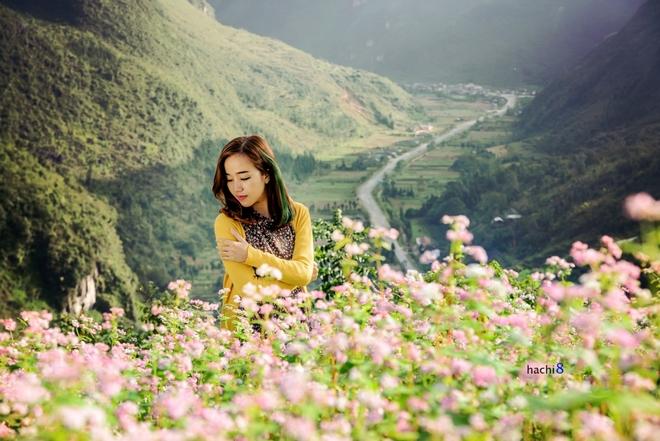 Tour du lịch Hà Giang mùa hoa tam giác mạch