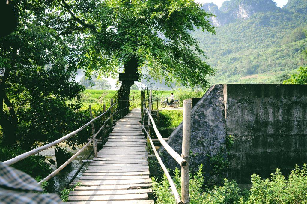 Đi qua cầu tre - Ảnh: Heo Bờ Rồ