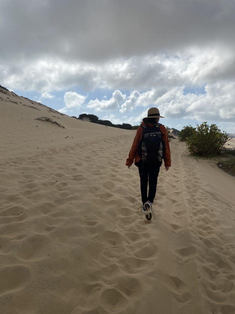 Băng sa mạc cát để chinh phục Cực Đông