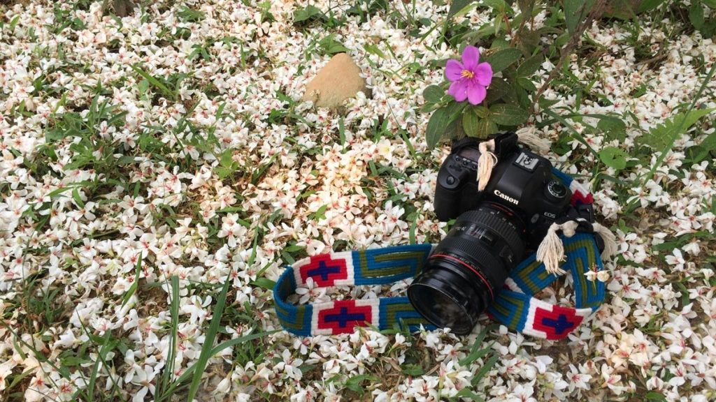 Vẻ đẹp hoa trẩu trên đường tuần tra biên giới – Ảnh: Thủy Trần