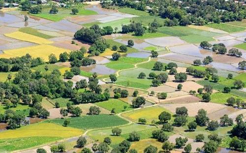 Cánh đồng Tà Pạ địa điểm du lịch ở An Giang