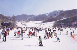 Lễ hội trượt tuyết ở Nhật Bản vào tháng 2. Ảnh Internet