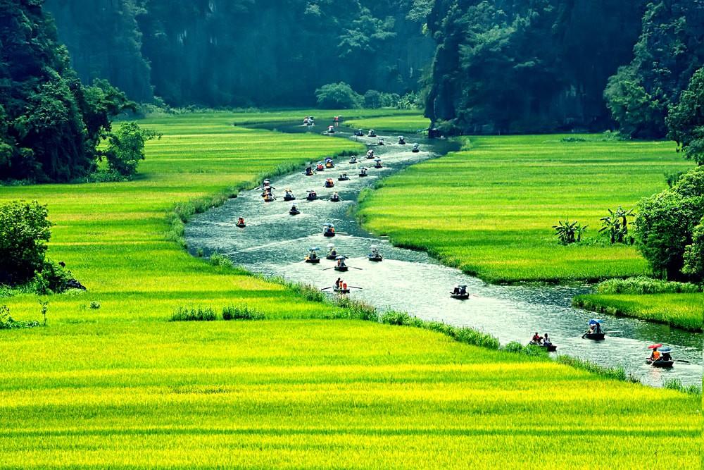Du lịch Tràng An Ninh Bình mùa nào đẹp nhất? Ảnh Internet