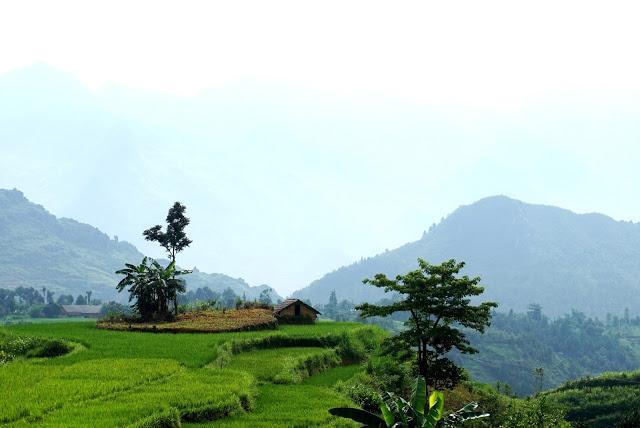 Bình yên giữa bản làng Nậm Đăm - địa điểm du lịch Hà Giang. Ảnh Giàng A Phớn