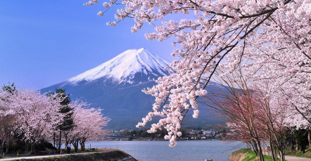 Nhật Bản là điểm đến bạn không nên bỏ qua trong tháng 3 này. Ảnh Internet