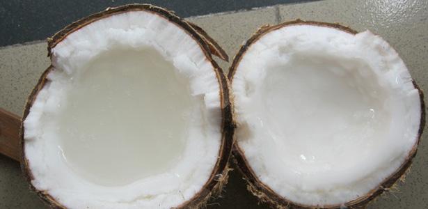 Dừa Sáp được trồng duy nhất tại Huyện Cầu Kè, Tình Trà Vinh