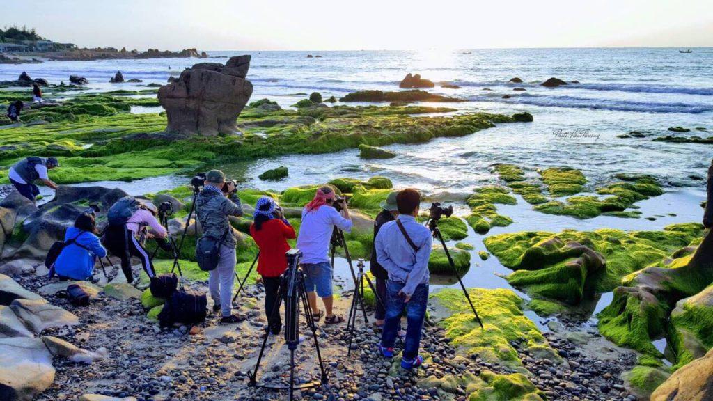 Các tay súng xếp hàng dài để sáng tác những bức hình mùa rêu trên biển Cổ Thạc . Ảnh Hoài Thương - Thổ Địa Du Lịch Tuy Phong