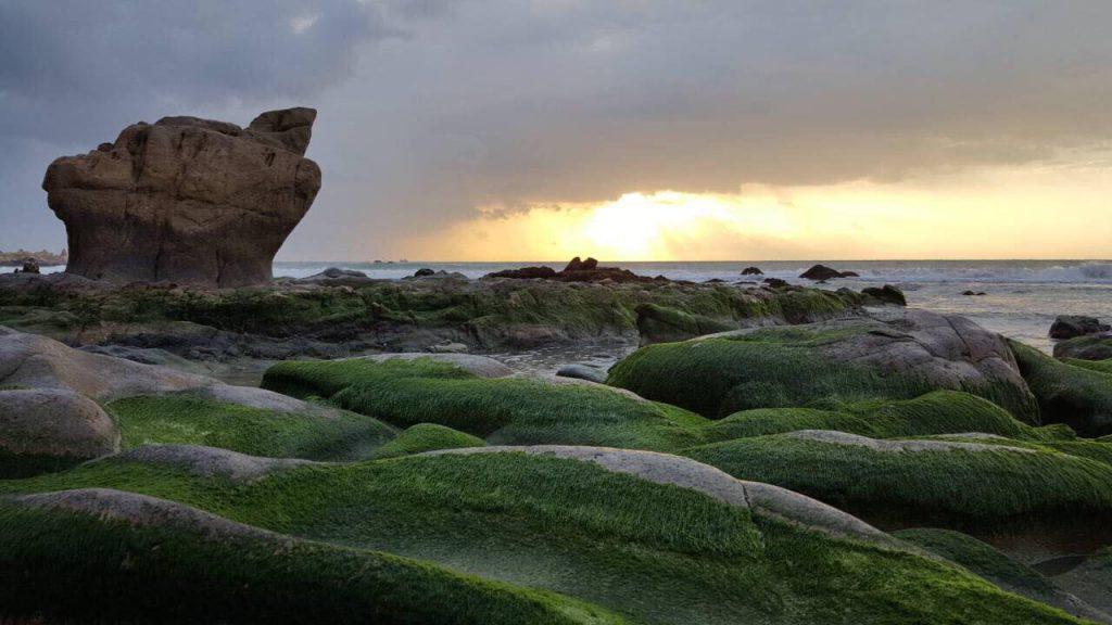 Ở một góc sáng tác khác mỏm đá có hình con rùa vươn khơi