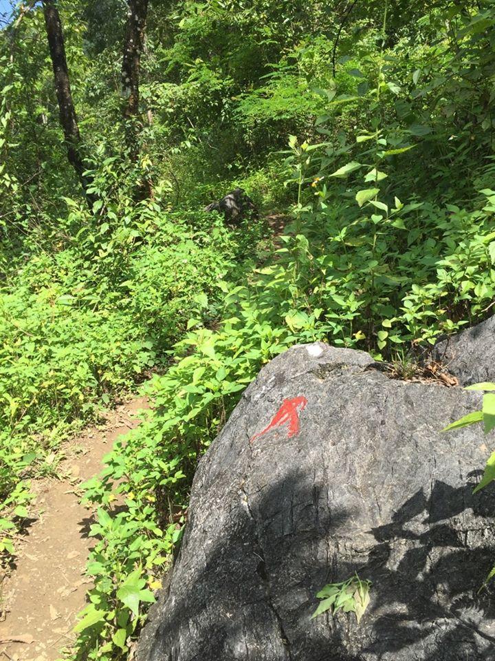 Đi theo lối men sườn núi được chỉ dẫn