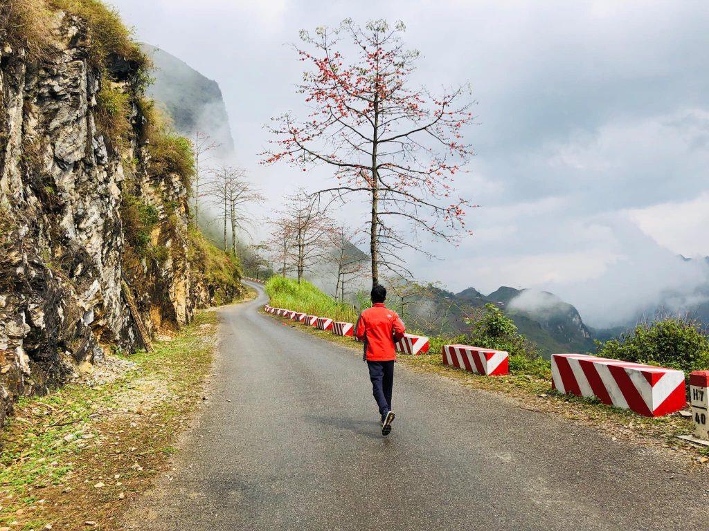 Con đường hoa gạo đẹp n hất Hà Giang